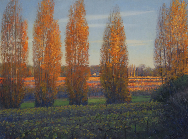 poplars-at-dusk, oil painting, California landscape painting, Sonoma landscape, poplar trees, Sonoma vineyards, California wine country painting