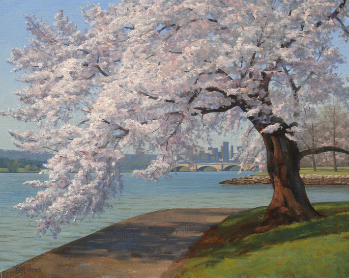cherry blossoms, landscape painting, oil painting, Washington DC cherry blossom painting, Tidal Basin cherry blossoms, springtime in Washington DC, Washington DC cherry blossom festival
