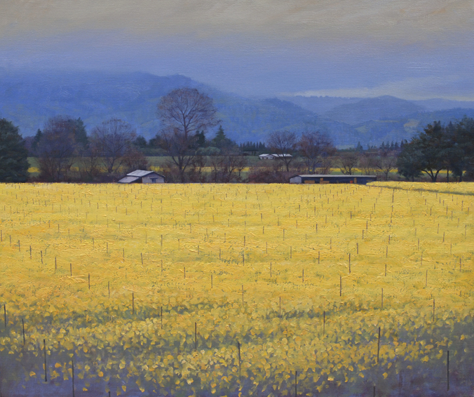 mustard bloom, landscape painting, oil painting, Sonoma mustard fields, Sonoma landscape