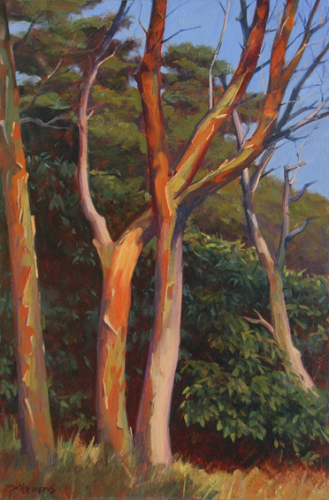 madrona dance, landscape painting, oil painting, madrona trees Orcas Island, Orcas Island landscape, San Juan Islands WA, Pacific Northwest landscape